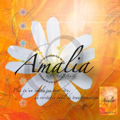 Amalia-abondance – Le jeu