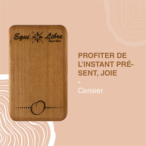 CERISIER-equilibre-bien-etre-equi-libre-frederic-myotte-duquet-amalia-développement-personnel