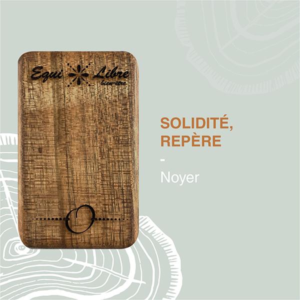 Noyer-equilibre-bien-etre-equi-libre-frederic-myotte-duquet-amalia-développement-personnel