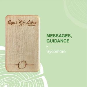 SYCOMORE-equilibre-bien-etre-equi-libre-frederic-myotte-duquet-amalia-développement-personnel