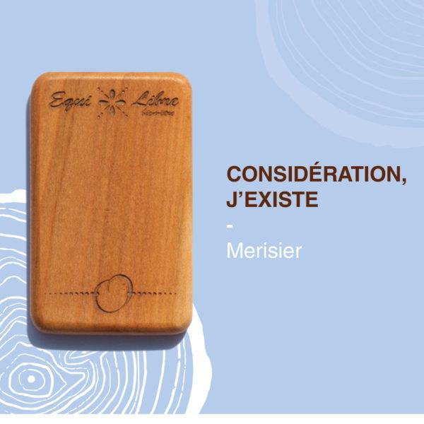 Merisier-equilibre-bien-etre-equi-libre-frederic-myotte-duquet-amalia-développement-personnel