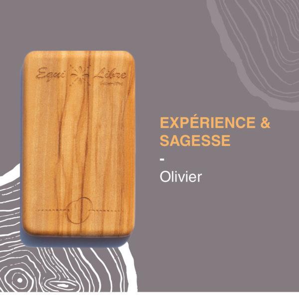 Olivier-equilibre-bien-etre-equi-libre-frederic-myotte-duquet-amalia-développement-personnel