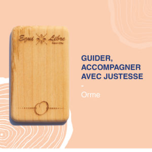 Guider, accompagner avec justesse – ORME