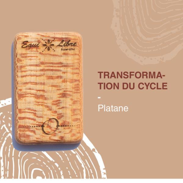 Platane-equilibre-bien-etre-equi-libre-frederic-myotte-duquet-amalia-développement-personnel